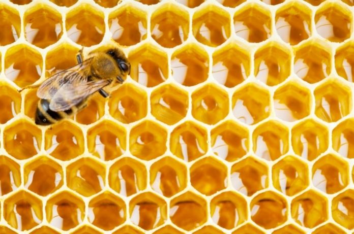 4 Essential Ways Honey Benefits Cosmetic Businesses